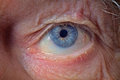 Old man face part closeup eye looks camera Royalty Free Stock Photos