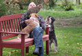 Old man with pets in the park senior enjoying company of his two dogs and cat on bench Royalty Free Stock Photos