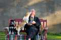 Old man with pets senior dogs and cat on his lap on bench Stock Photography