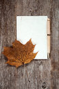 Old maple leaf and blank paper Royalty Free Stock Photo