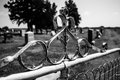 Old Metal Cemetery Gate Black and White Royalty Free Stock Photo
