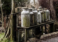 Old Milk Churns Royalty Free Stock Photo