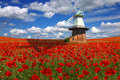 Old mill on a background of the poppies plantation Royalty Free Stock Photo
