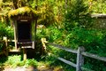 Old mossy phone booth in hoh rainforest olympic national park Royalty Free Stock Photo