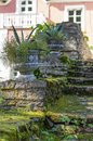 Old mossy stairway with decorative flowerpots Royalty Free Stock Photo