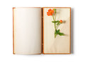 Old notebook open isolated on white background with summer flowers Royalty Free Stock Image