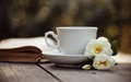 Old open book and a white cup with a wild roses Royalty Free Stock Photo
