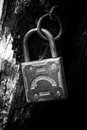 Old padlock hanging on the rotting jamb black and white close up Royalty Free Stock Photo