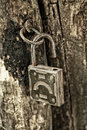 Old padlock hanging on the rotting jamb close up Royalty Free Stock Photo