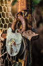 Old padlock on metal gate Stock Photo