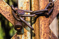 Old padlock on metal gate Stock Image