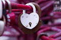 Old padlocks on blurred background Royalty Free Stock Photo
