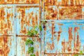 Old painted metal door with traces of rust and cracks. Royalty Free Stock Photo