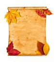 Old paper with autumn leaves, autumn note Stock Photo