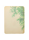 Old paper card with bamboo leaves isolated on white background Royalty Free Stock Photo