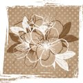 Old paper with cherry blossom beige background Royalty Free Stock Image