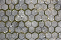 Old Paving Texture