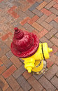 Old pedestrian brick paveway in svannah with hydrant Royalty Free Stock Photo