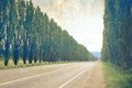 Old photography of road empty and trees as Royalty Free Stock Photography