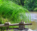 Old pier on riverbank small Stock Image
