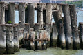 Old Pilings Royalty Free Stock Images