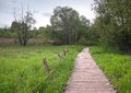 Old planked footway in the park Stock Photography