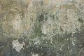 Old plaster wall texture background Royalty Free Stock Image