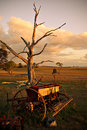 Old plough on farm at sunset Royalty Free Stock Photo