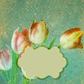 Old polka dot paper background eps with beautiful tulips and also includes Stock Photography