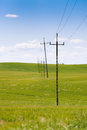 Old power line and telephone poll standing in row in green spring field visible sky Stock Photo
