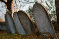 Old Prague Jewish Cemetery Royalty Free Stock Photo