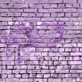 Old Purple Painted Brick Wall Background Isolated Design