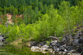 Old quarry pond and young trees Stock Photography