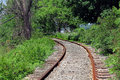 Old railroad tracks run through a wooded area with lush green foliage Royalty Free Stock Photo