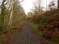 Old railway track now walkway wyre forest worcestershire november Stock Photography