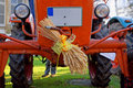 Old red tractor with wheat ears. Royalty Free Stock Photo