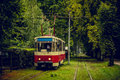 Old red tram goes through a tunnel of the thickets of trees in the forest park Royalty Free Stock Photo