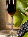 Old red wine with grape still-life Royalty Free Stock Photo