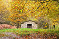 Old refuge in the park forest autumn Royalty Free Stock Image