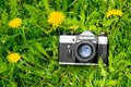 Old retro film camera on green grass with yellow flowers on sunny day Royalty Free Stock Photo