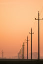 Old retro telephone poles in the field at sunset Stock Photography