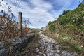 Old roman road near palestrina rome italy Royalty Free Stock Image