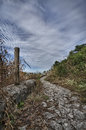 Old roman road near palestrina rome italy Stock Image