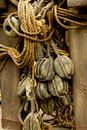Old rope and wooden block pulleys Stock Images