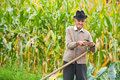 Old rural man using scythe Royalty Free Stock Photos