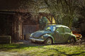 Old rusted beetle covered with a moss surface Royalty Free Stock Photo