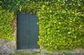 Old Rustic door Royalty Free Stock Photo