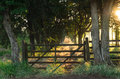 Old rustic farm gate Royalty Free Stock Photo