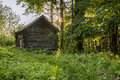 Old rustic log sauna among the trees and greenery in Russia Royalty Free Stock Photo