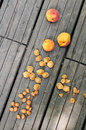 Old rustic table with apricots and pits Stock Images